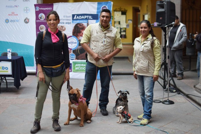 P-RUN, la primera Carrera Canina del municipio de Querétaro, será el 28 de julio