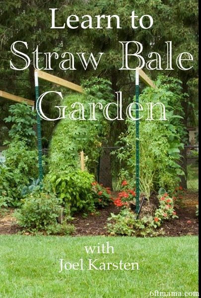 learn to straw bale garden