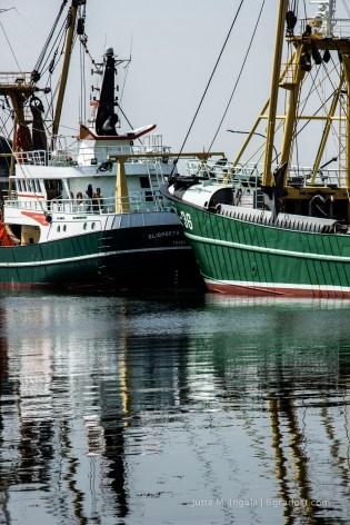 Spiegelung im Hafenbecken