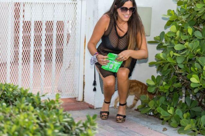 Bombshell Claudia Romani Feeding The Cats On South Beach
