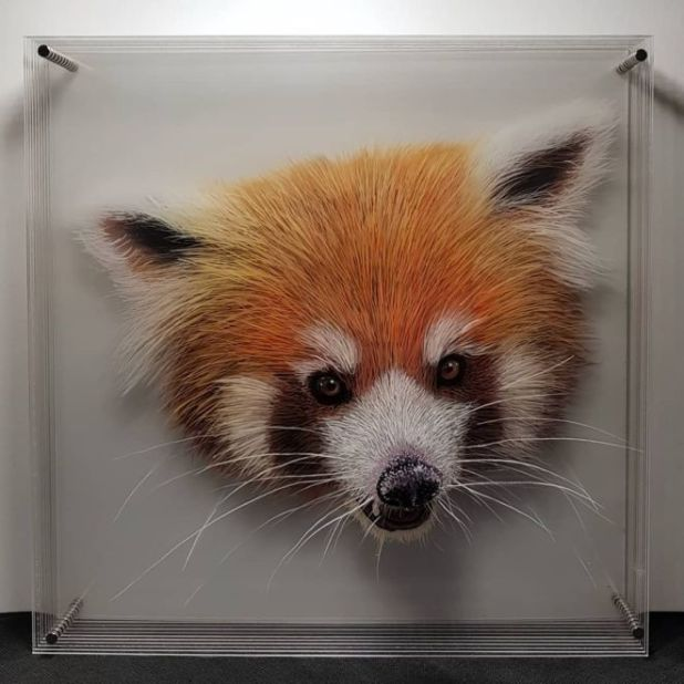 3D Glass Animals Paintings By Yosman Botero Gomez