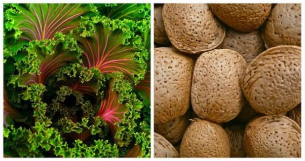 The Foods That Can Be Paired Together For Health Benefits