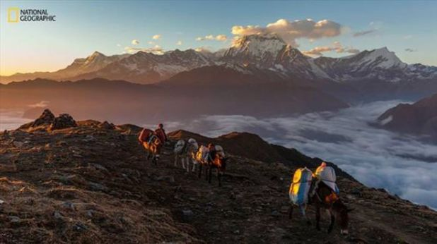 15 National Geographic Photo Contest Enteries From Around The World