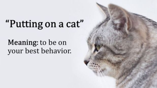 17 Idioms That Look Hilarious When Translated To English