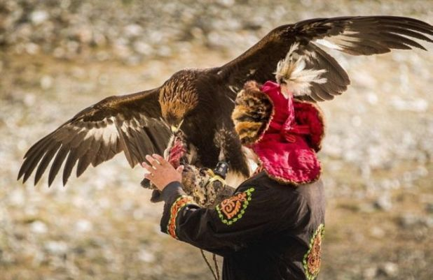 The Lives Of Eagle Hunters In Western Mongolia