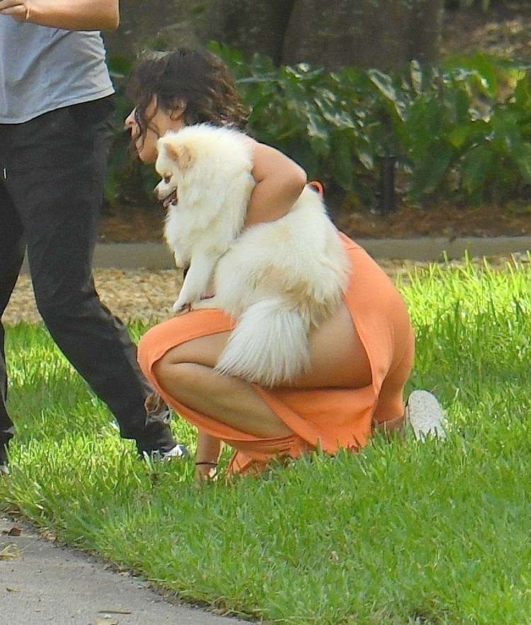Camila Cabello Playing With Her Dogs Out In Miami