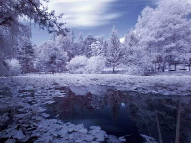Click to Enlarge - Feast Your Eyes With These Winter Wallpapers