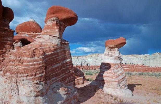 Beautiful Stone Mushrooms In Arizona
