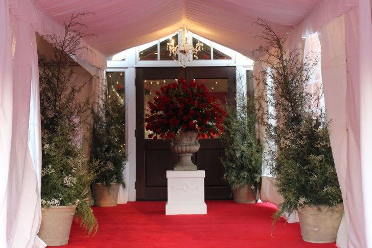 Red-carpet-entrance