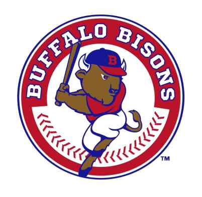 BISONS-2013-LOGO