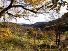 The Senouire valley