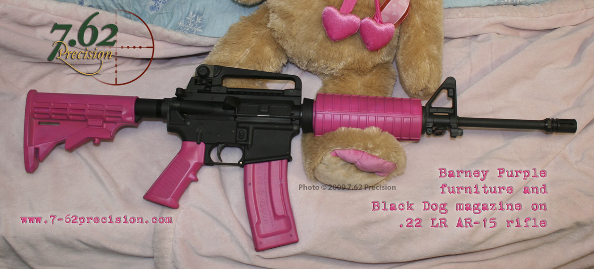 AR-15.22 LR conversion with furniture and Black Dog magazine in Barney Purple