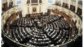 Egypt's Parliament (Photo courtesy fo the Alliance of Queer Egyptian Organizations.)