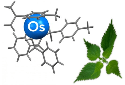 22db00730 Cancer targeted with reusable  stinging nettle… – Ecology