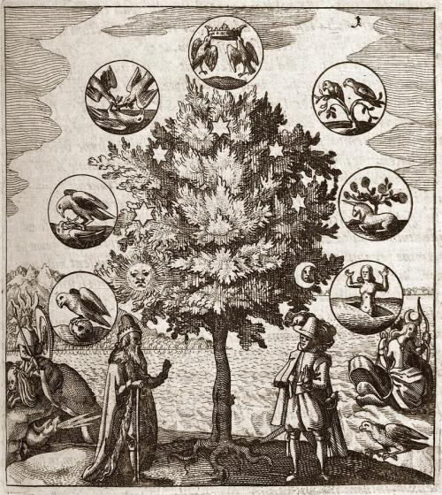 The Alchemical Tree Tumblr