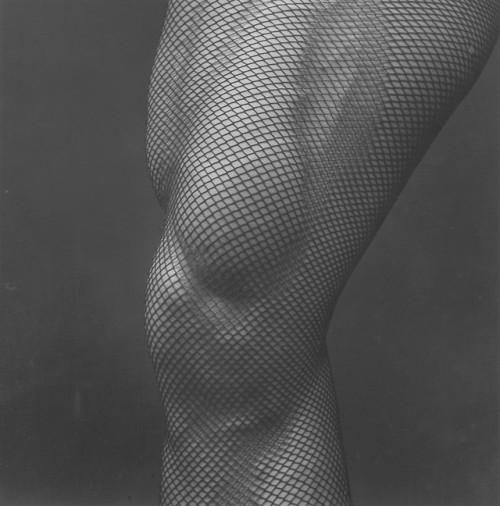 tumblr_pamqwhVsHz1qfc4xho1_500 Robert Mapplethorpe, Leg, 1983 Alison Jacques Gallery Contemporary