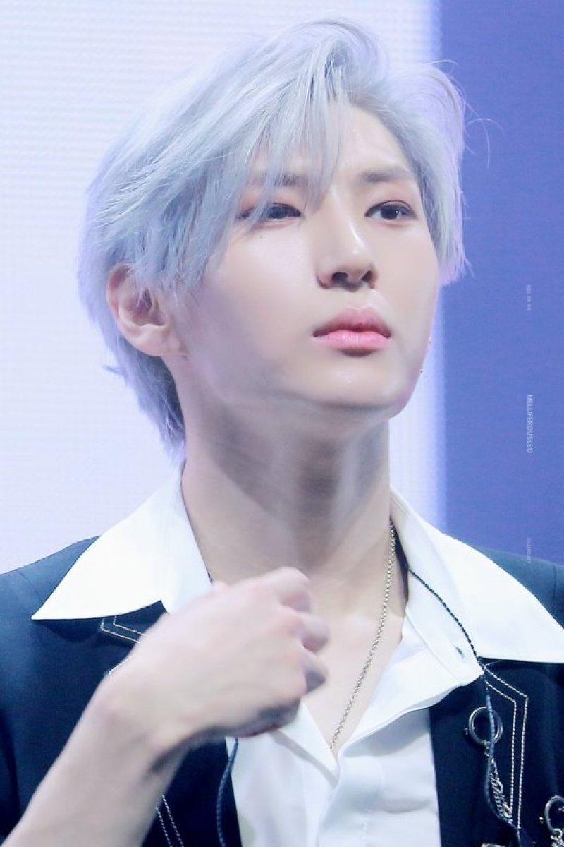 VIXX Came Back With Their New Song Scientist And Not Long After Netizens Heart Were Beating Fast Seeing Leo Sporting Grey Silver Hair Which