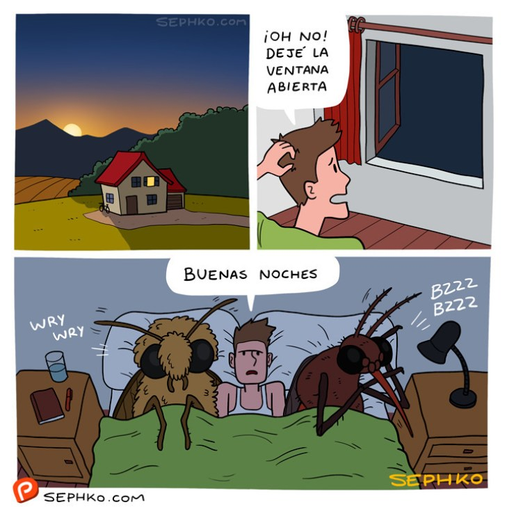 Te pasa por no cerrar la ventana