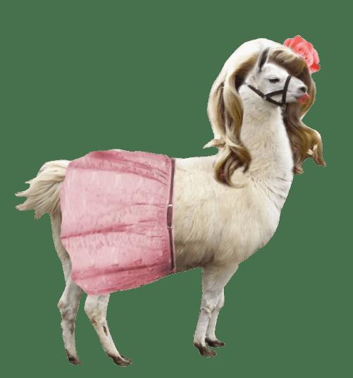 Llama Del Rey On Tumblr