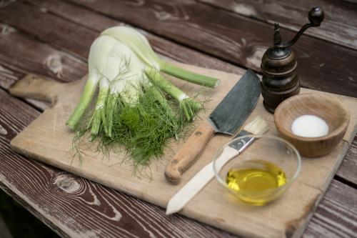 grilled fennel – just with olive oil, salt and pepper