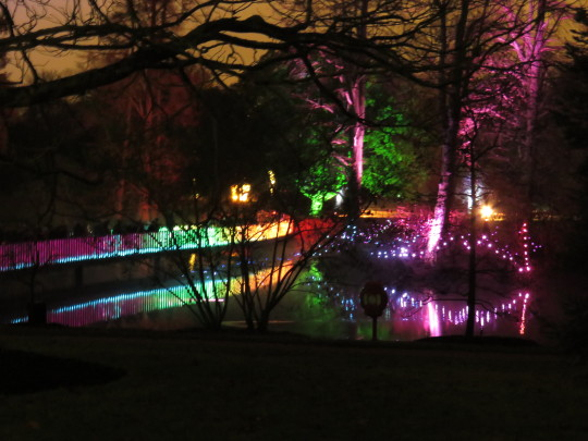 Coloured lights at Christmas at Kew