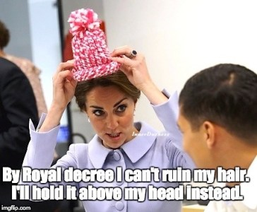 These Memes Say Everything You ve Been Thinking About The Royal     Also  it clashes with my outfit