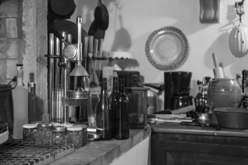 Olive Oil from Mulino Rotone, Tuscany