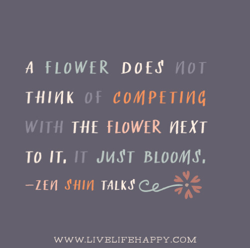 Image result for zen quote ~ a flower