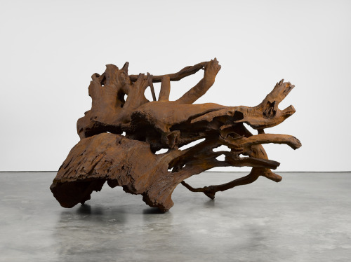 tumblr_oihiv6uA4m1qfc4xho1_500 Ai Weiwei, Iron Root, 2016 Contemporary