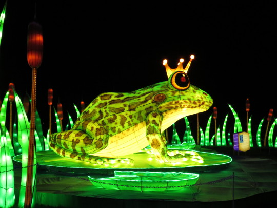 Longleat's Festival of Light celebrating fairy tales with Chinese lanterns in the shape of the Frog Prince.