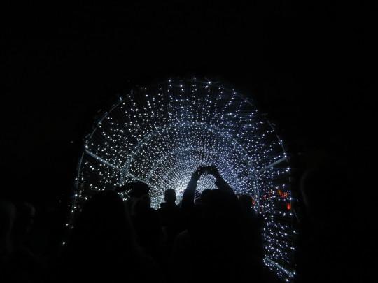 Tunnel of light at Christmas at Kew.