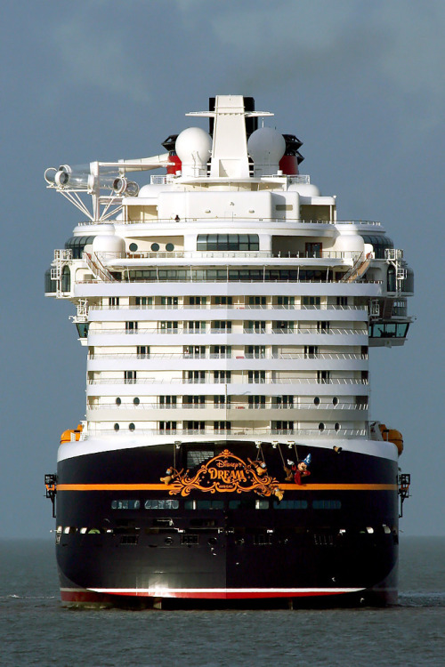 Disney Dream Cruise Ship Tumblr