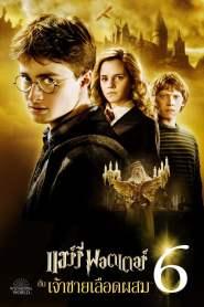 แฮร์รี่ พอตเตอร์ กับ เจ้าชายเลือดผสม (2009) Harry Potter The Half-Blood Prince