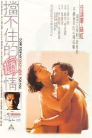 Crazy Love (1993) รักผิดต้องลองใหม่