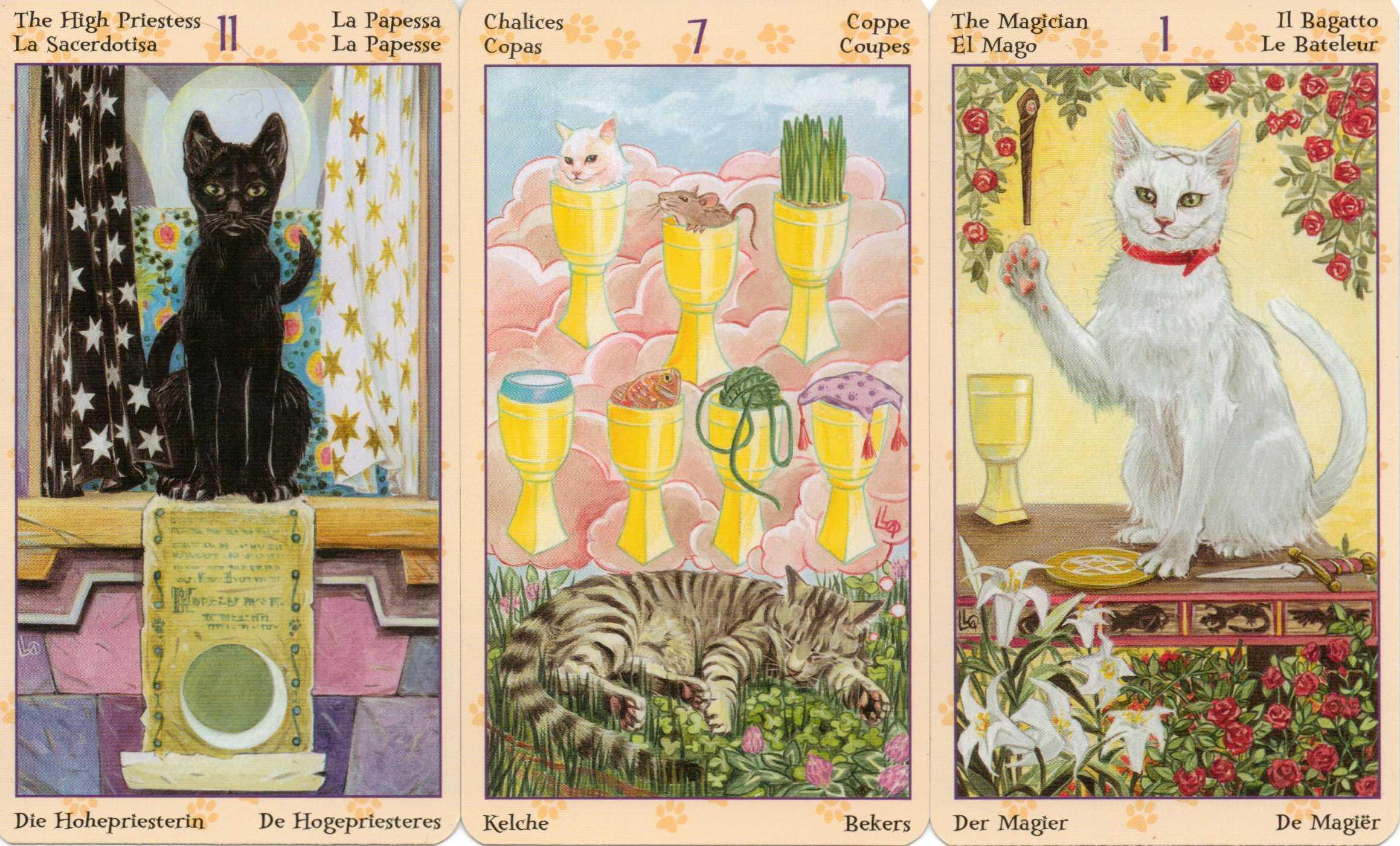 Tarot Of Pagan Cats 78mirrors Reflections