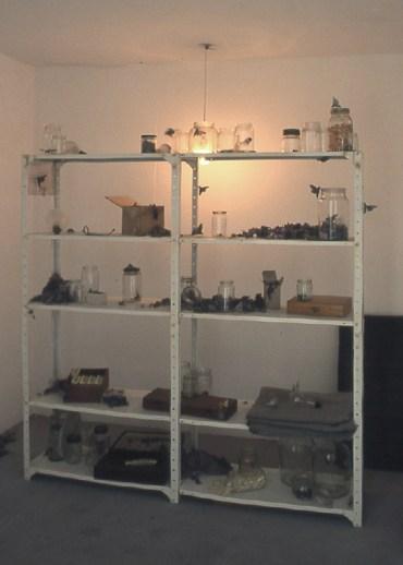 mothroom3