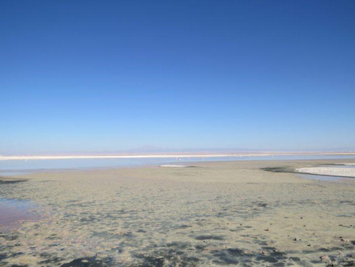 Laguna Chaxa - Salar do Atacama - Chile - 7 Cantos do Mundo