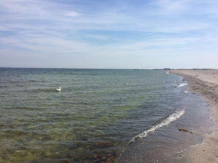 O que fazer em Copenhague - Amager Strandpark - Copenhague - Dinamarca - 7 Cantos do Mundo