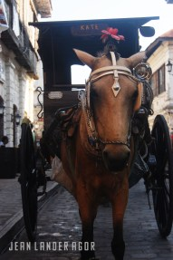 The kalesa or horse-drawn carriage is the go-to transportation along Calle Crisologo