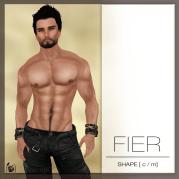 FIER-shape-Poster