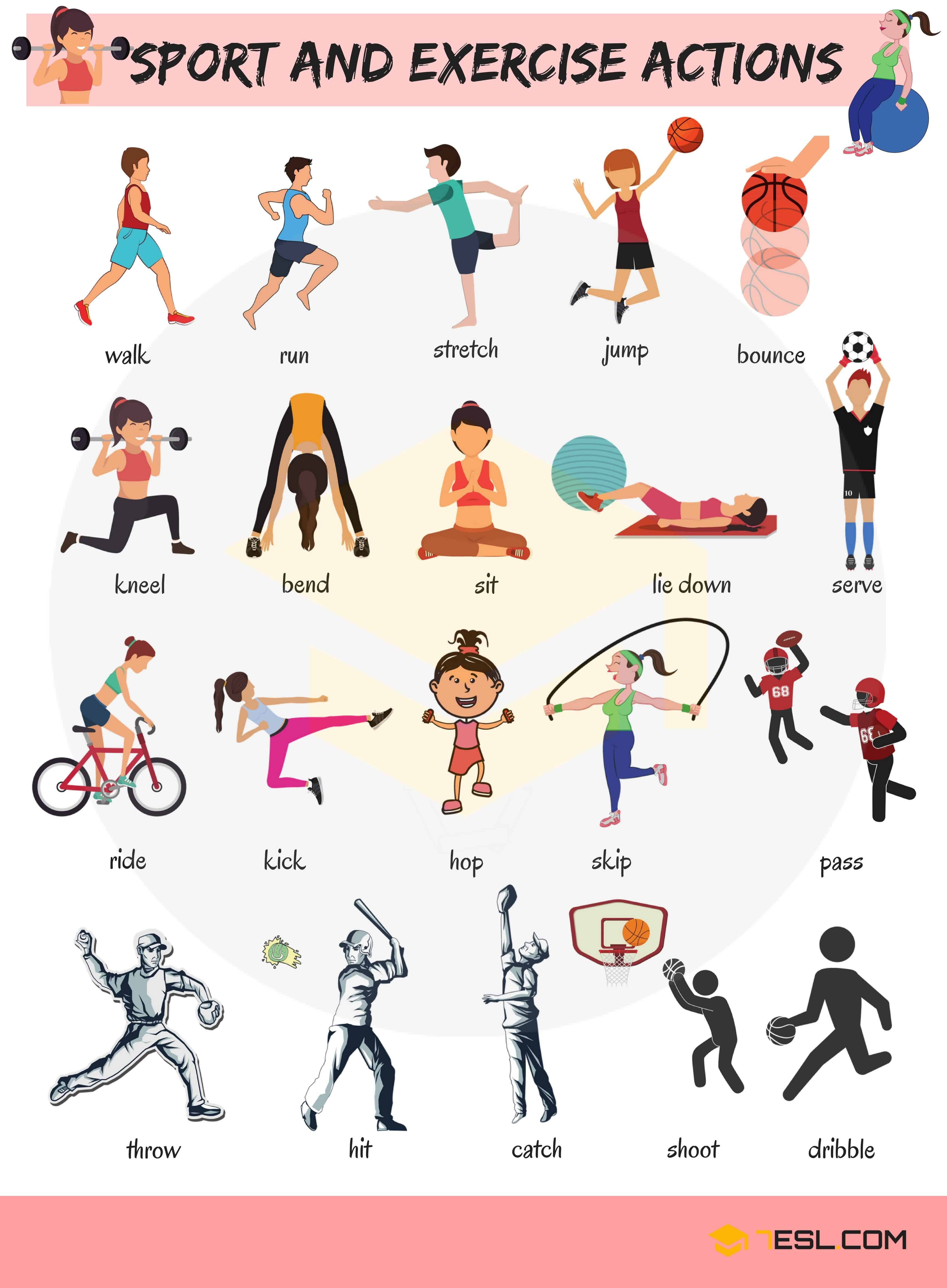 Sport And Exercise Actions Vocabulary In English