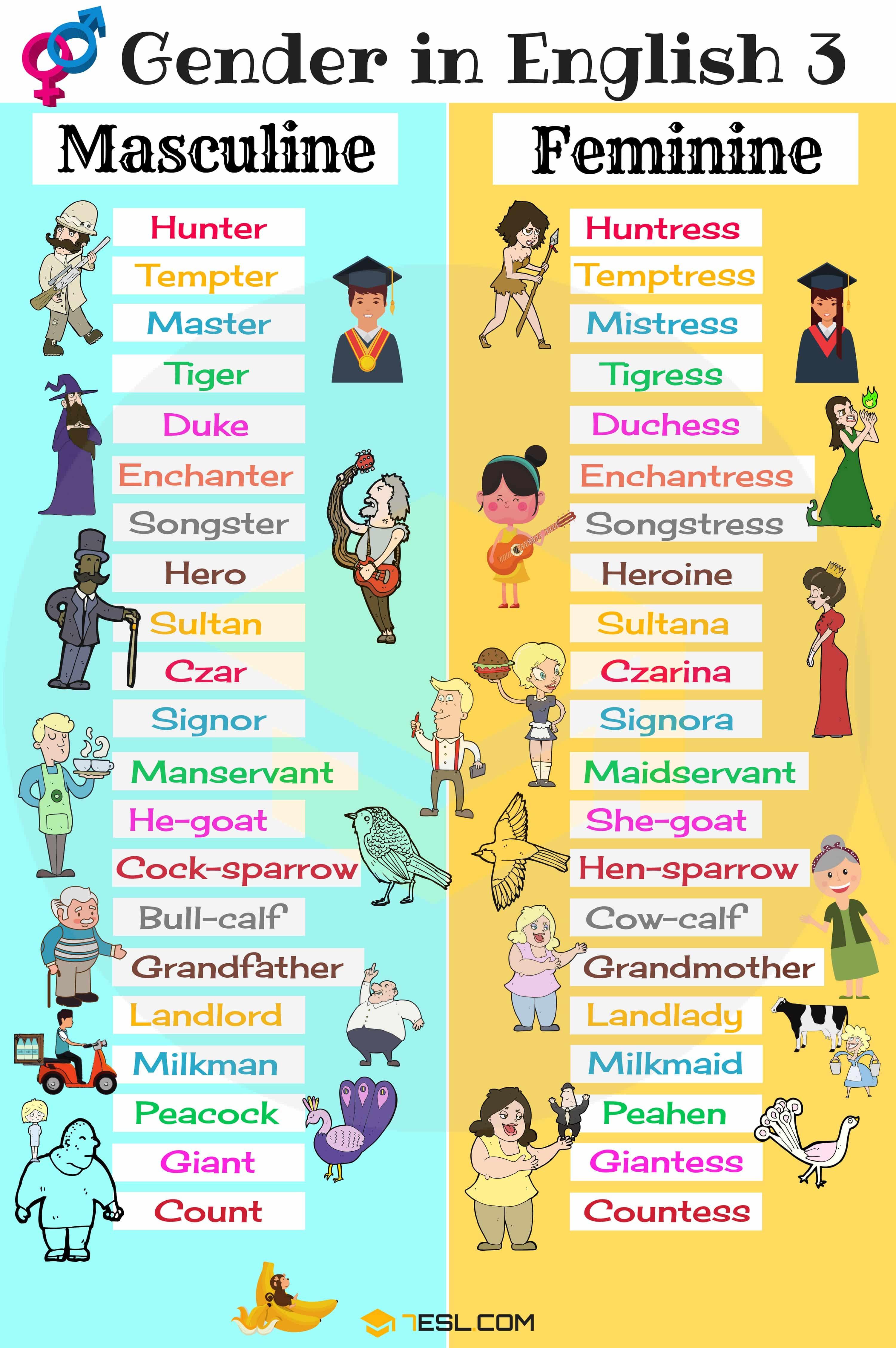 Gender Of Nouns Useful Masculine And Feminine List