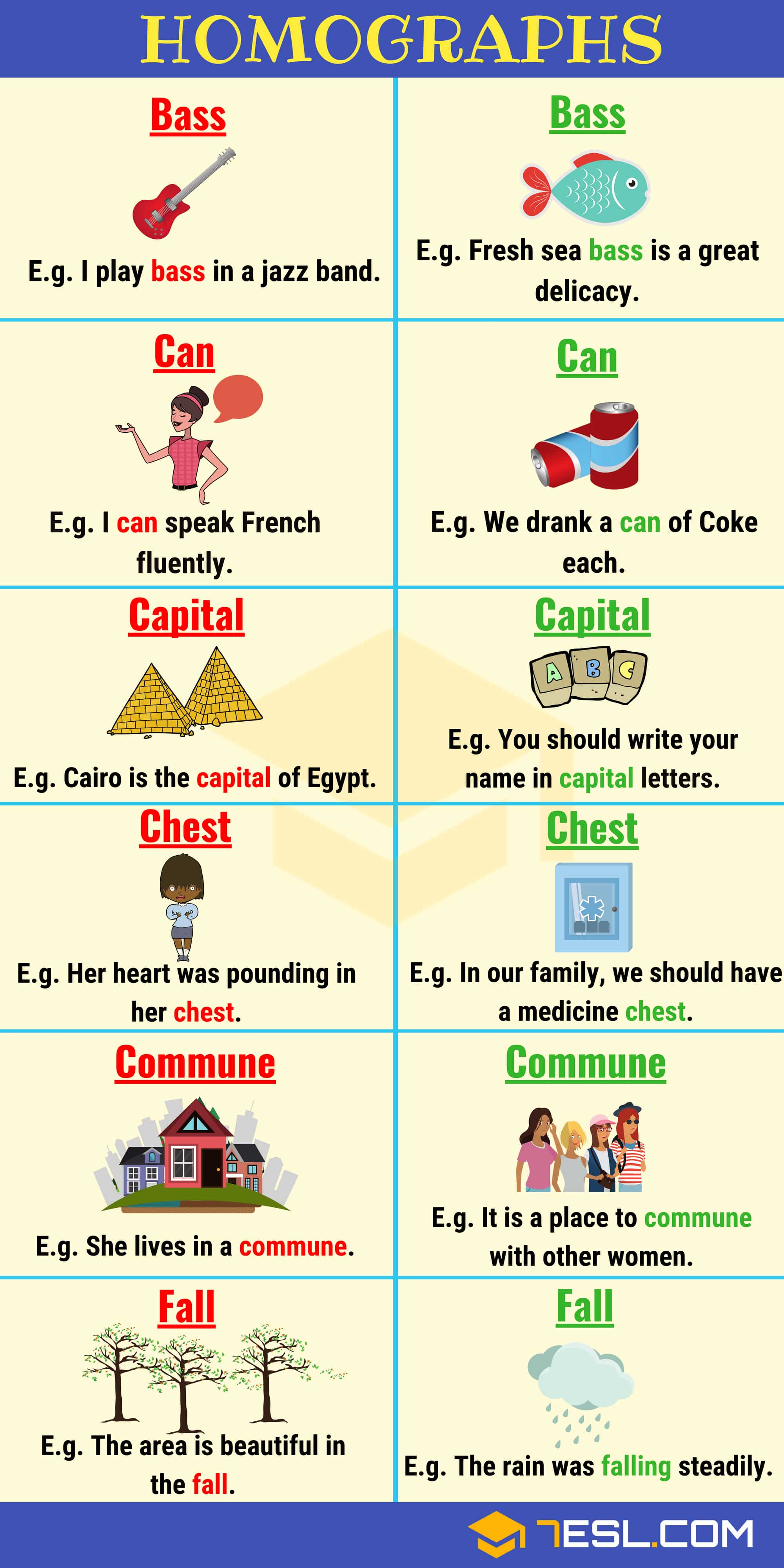 Homophones List With Meanings And Sentences