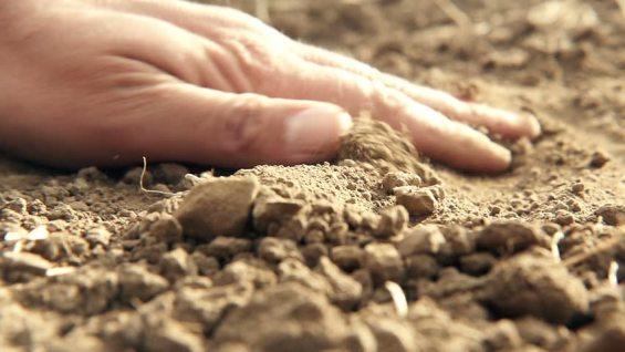 touching ground.jpg