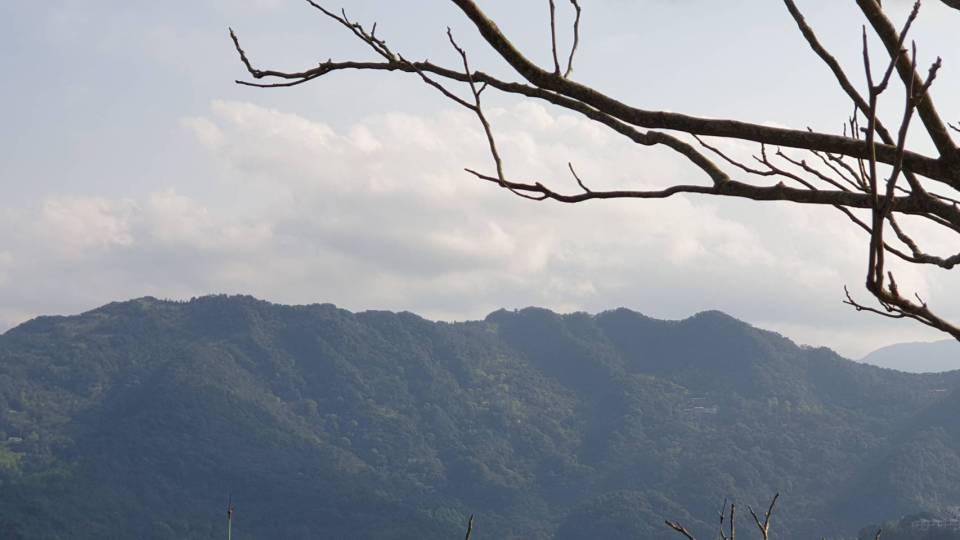 7flow Tribe 遠眺山景
