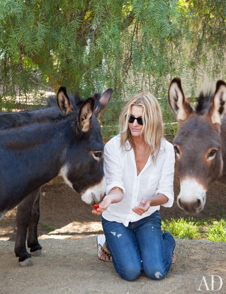 item18.rendition.slideshowWideVertical.patrick-dempsey-malibu-home-20-donkey-feeding