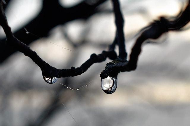 В Рязани ожидается резкое похолодание