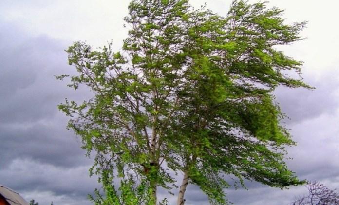 Рязанцев предупредили об ухудшении погоды