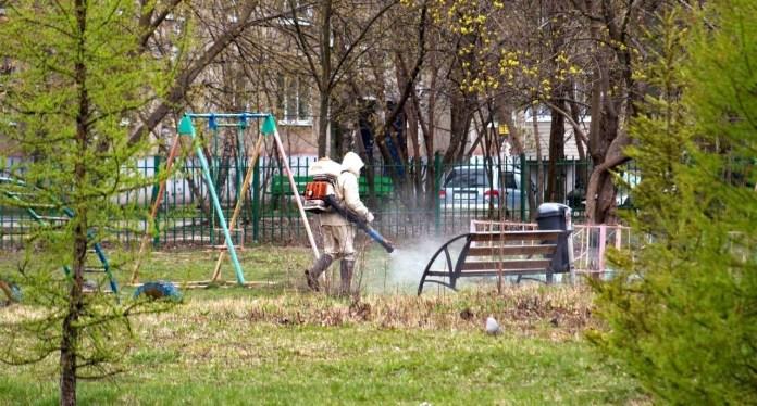 В Рязани парки обрабатывают от клещей