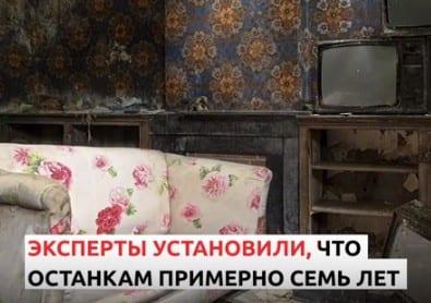 Рязанка нашла в унаследованной квартире кости бывшего хозяина